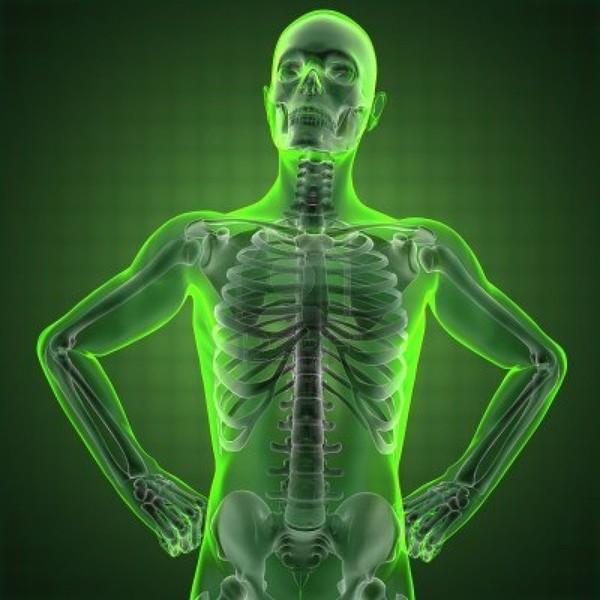 mobile digital x-rays, Human body